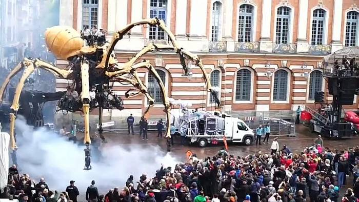 News video: Riesenspinne in Toulouse
