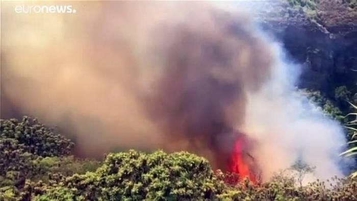 Video: 50 Meter hohe Flammen: Waldbrand wütet weiter auf Gran Canaria