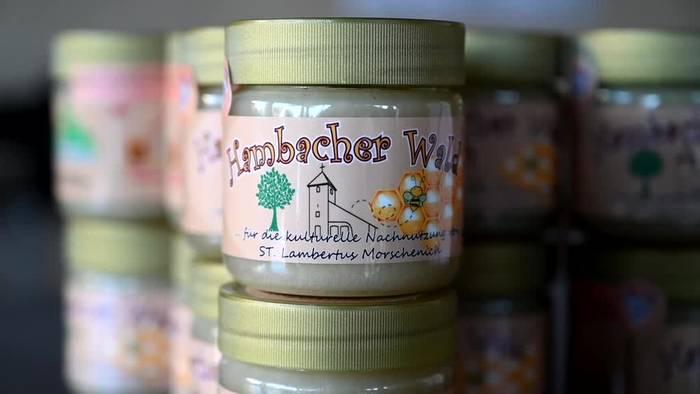Video: Bienenvölker liefern «Hambi-Honig» aus dem Hambacher Forst