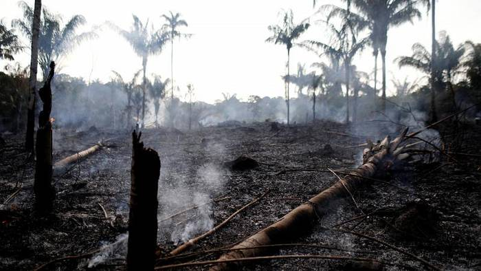 Video: Rekord-Brände in Brasilien: Die grüne Lunge der Erde steht in Flammen