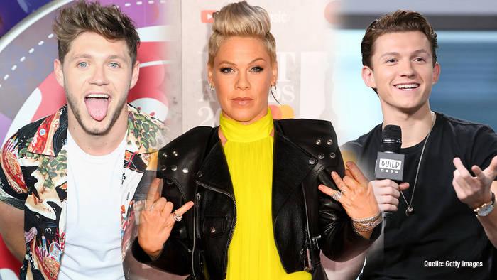 Video: P!NK, Niall Horan & Co.: Diese Stars fielen auf fiesen Fake rein