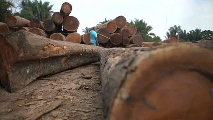 News video: Wegen Waldbränden: Widerstand in EU gegen Mercosur-Abkommen wächst