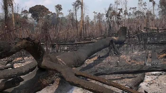 News video: Brasilianische Soldaten im Einsatz gegen die Feuer