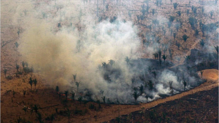 Video: Amazonas-Waldbrand: Diese Promis setzen sich für die Rettung ein