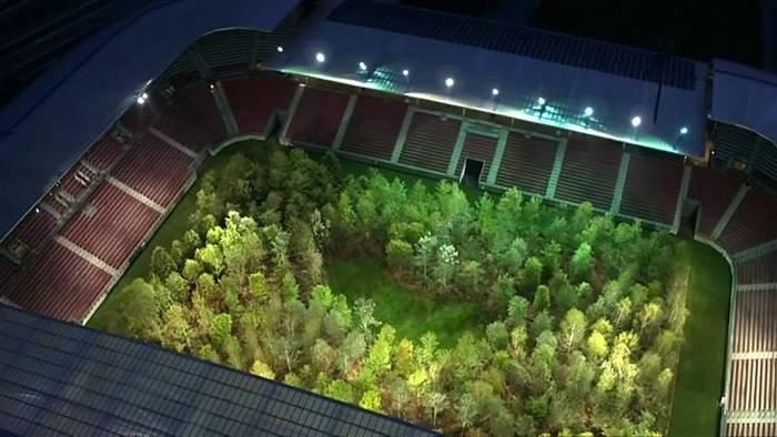 Video: Bäume statt Fußball: Künstler pflanzt Wald in österreichischem Stadion