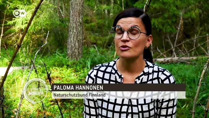 News video: Finnland: Kampf gegen Abholzung der Wälder | Fokus Europa