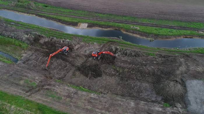 Video: Extrem seltene Bachmuschel in Vorpommern entdeckt