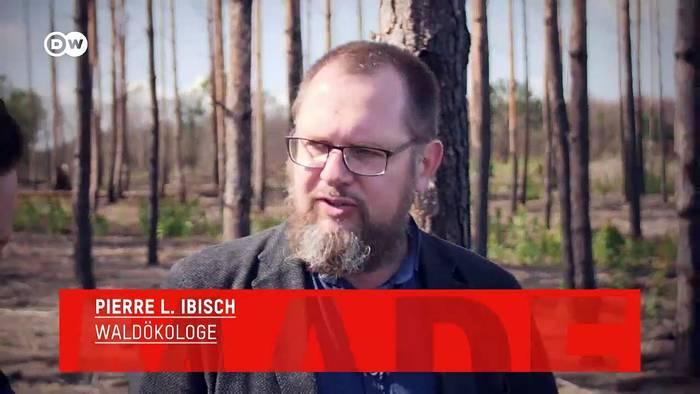 News video: Tacheles: Pierre L. Ibisch, Klimaexperte | Made in Germany
