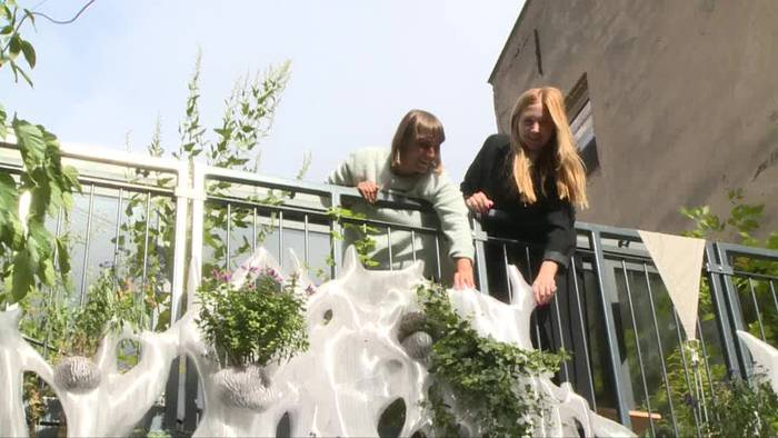 News video: Erstes Grünpflanzen- und Insektenhabitat aus dem 3D-Drucker