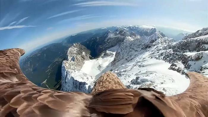 Video: Einzigartige Bilder: Adler fliegt mit Kamera über die Alpen