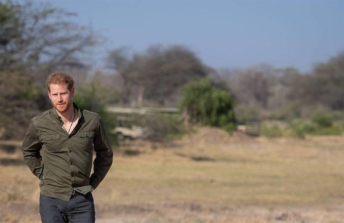Video: Prinz Harry: 'Prinz William und ich haben gute und schlechte Tage'