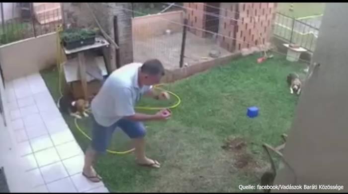 News video: Maulwurfjagd: Kleingartenbesitzer sprengt ganzen Garten in die Luft!