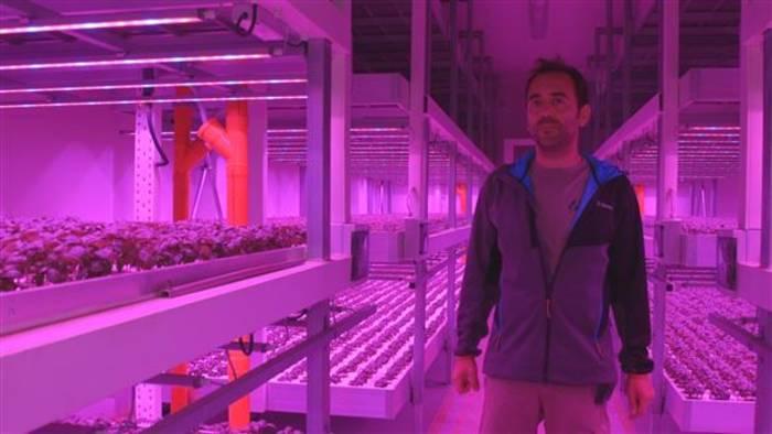 Video: So sieht die Landwirtschaft der Zukunft aus