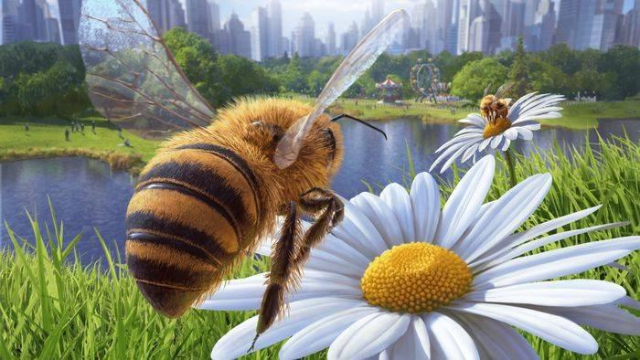 Video: Bienen, Steine, Toastbrote: Diese schrägen Simulatoren gibt es wirklich!