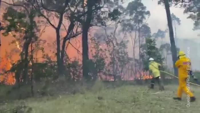 Video: Buschbrände rund um Sydney wüten weiter