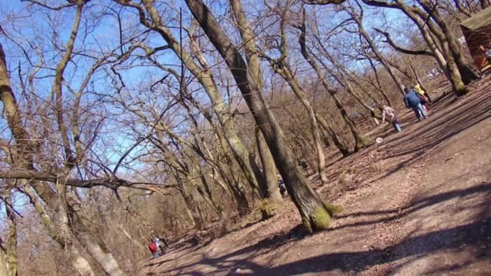 Video: Tagesausflug nach Tatabanya