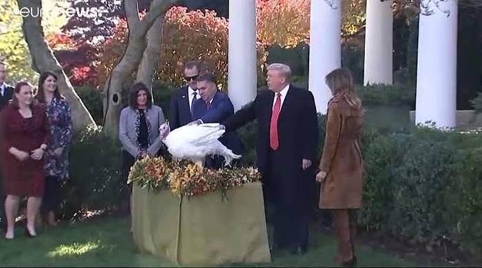 Video: Thanksgiving: Trump begnadigt die Truthähne