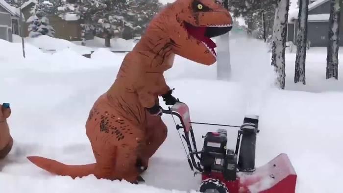 Crazy! Dinosaurier beim Schneeschaufeln