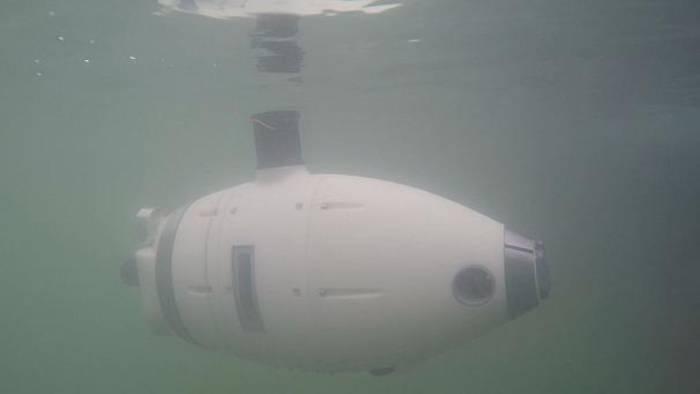 News video: Roboter-Schwarm im trüben Wasser von Venedig