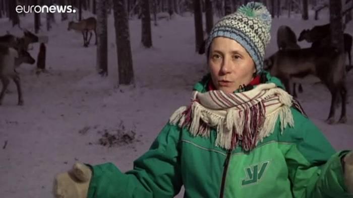News video: Lappland: Klimawandel macht Rentierzüchtern zu schaffen