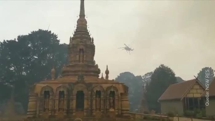 News video: Brände in Australien wüten weiter: Regen erwartet