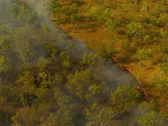 Video: Waldbrände in Australien