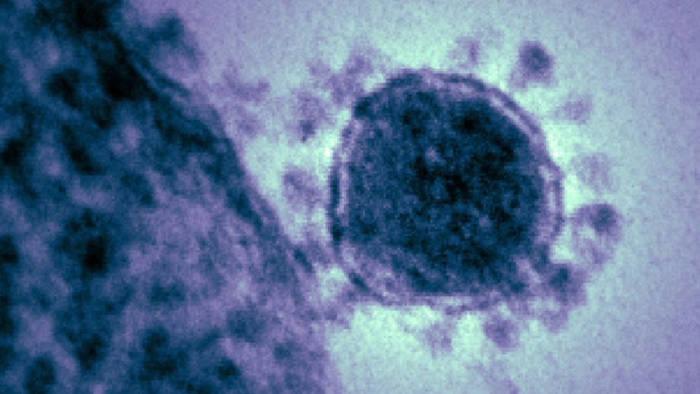 News video: Tödliches Virus aus China