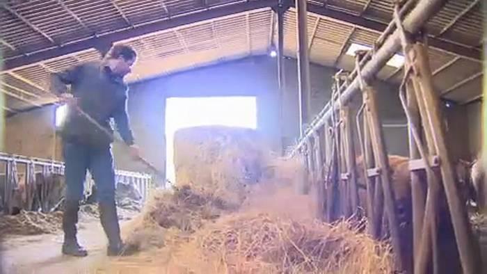 Video: EU-Haushalt: Kleinbauern befürchten Kürzungen