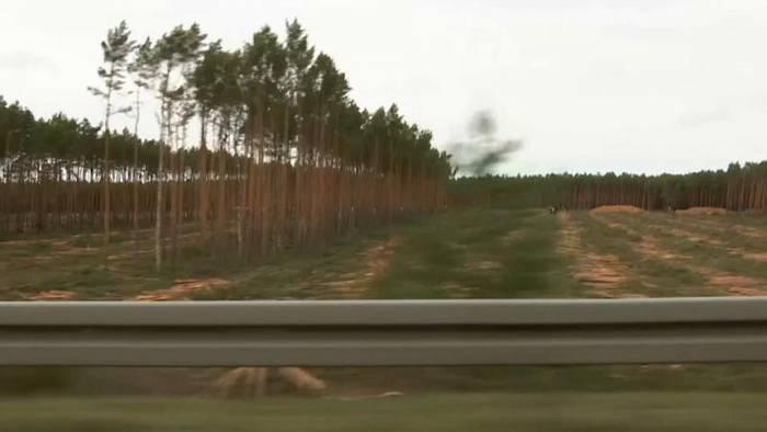 Video: Grüne gegen Grüne: Rodungsstopp für Tesla in Brandenburg