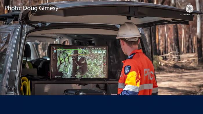 News video: Die Koala-Patrol in Australien sucht mit Dronen nach verletzten Tieren