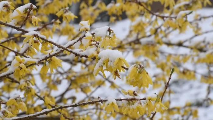 News video: Trotz Schneefall März 2020 war überdurchschnittlich sonnig