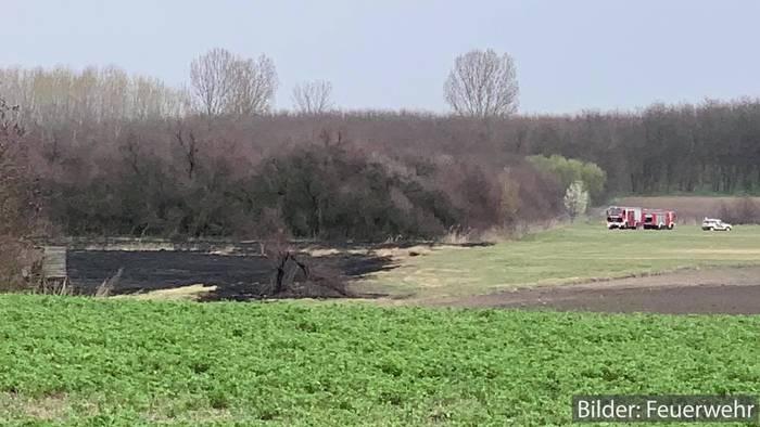 News video: Katastrophenschutz im Einsatz: Zahlreiche Busch- und Flächenbrände in Ungarn!