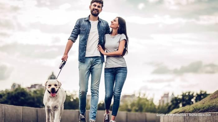 Video: Studien belegen: Ein Hund verhilft zum Date!
