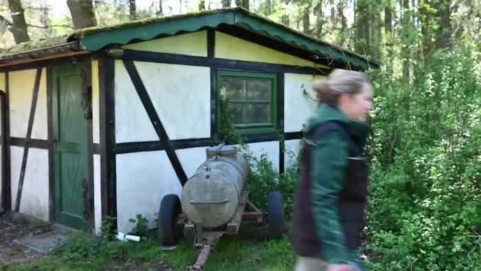 Video: Wildpark Eekholt freut sich über die ersten Storchenküken