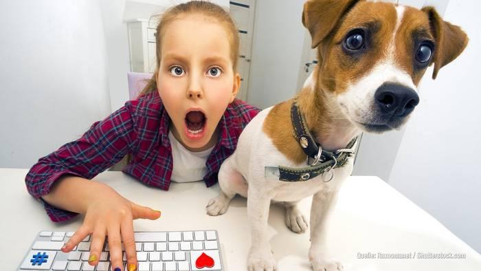 News video: Tierische Influencer: Von Doug The Pug bis Campus Cat