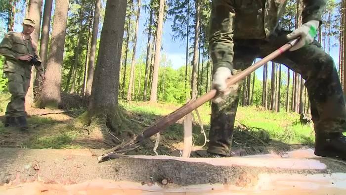 News video: Operation Borkenkäfer: Sondermission für Bundeswehr-Soldaten
