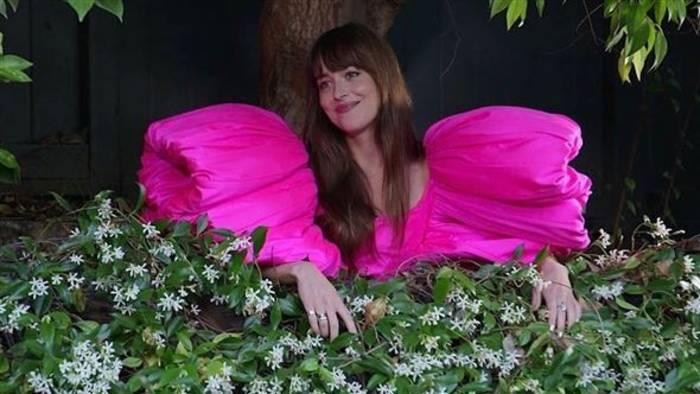 News video: Du musst sehen wie Kimmel Dakota Johnson über ihren Zaun interviewt