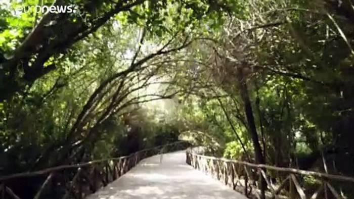 News video: Eintritt frei: Sizilien öffnet Museen und Ausgrabungsstätten