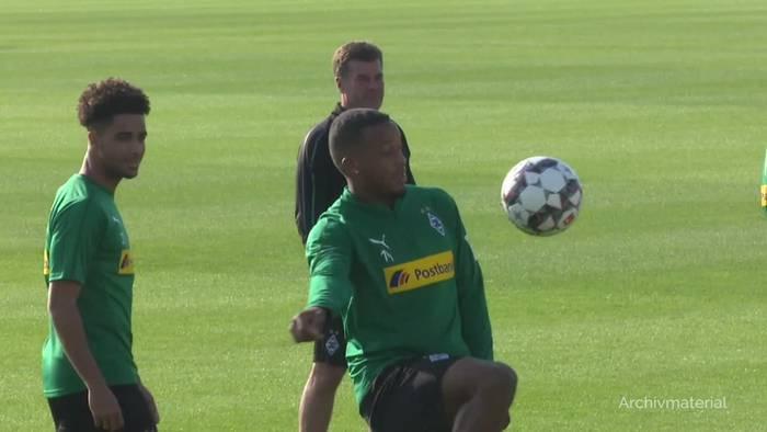 News video: HSV will mit neuem Trainer Thioune Wandel schaffen