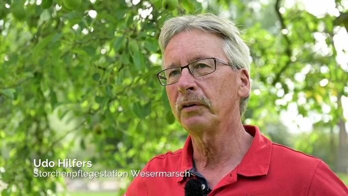 News video: Ein Zuhause für Hunderte Störche