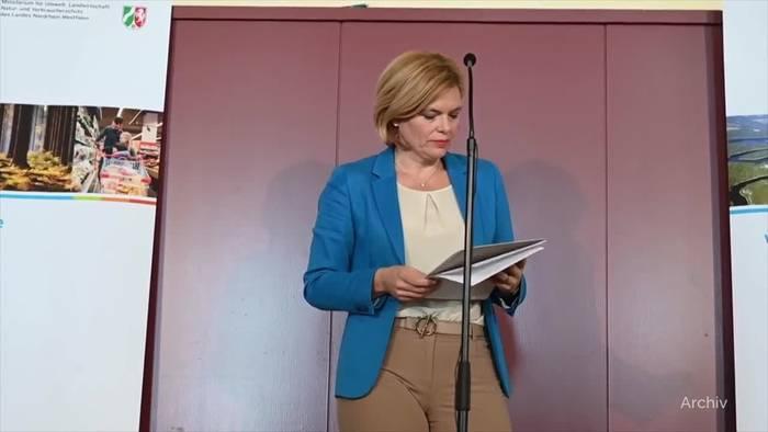 News video: Schweinepest: Verdachtsfall in Brandenburg