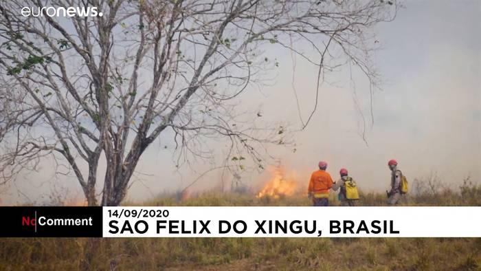 News video: Brasilien: Regenwald steht in Flammen - und es ist kein Regen in Sicht