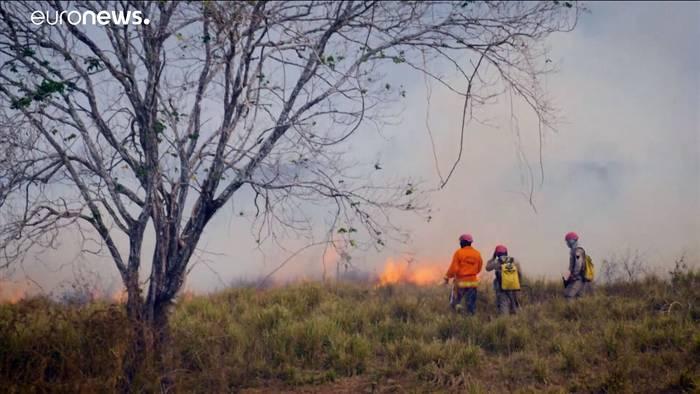 News video: Notstand im Pantanal - Verheerende Brände in Brasilien