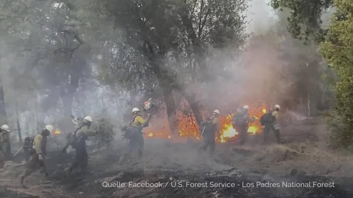 Video: Brände verwüsten den Westen der USA  - Trump in Kalifornien