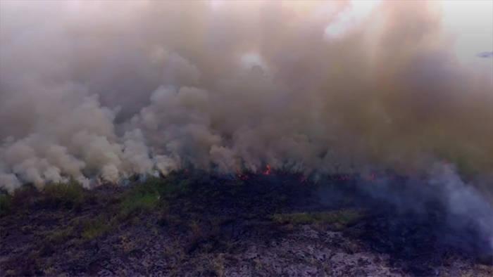 News video: Verheerende Brände: Rauch aus Kalifornien zieht bis Europa
