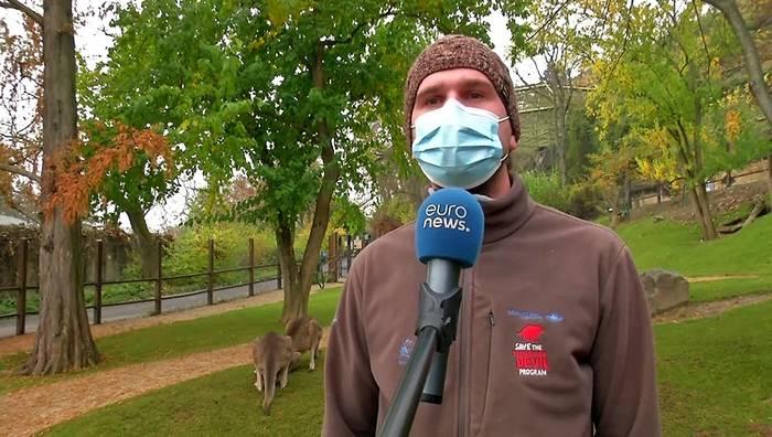 Video: Hunger im Lockdown: Prager Zoo sucht Futterspender