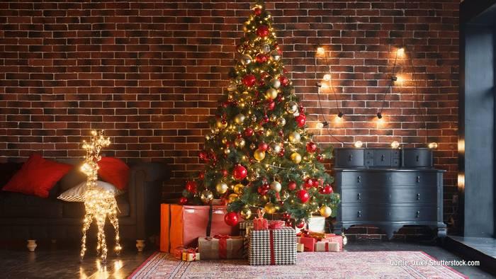 News video: Deutsche Promis und die schönsten Weihnachtsbäume