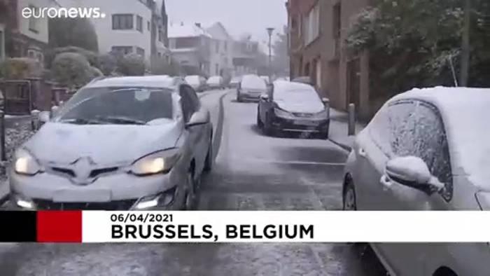 News video: Seltener Schnee in Brüssel am 6. April