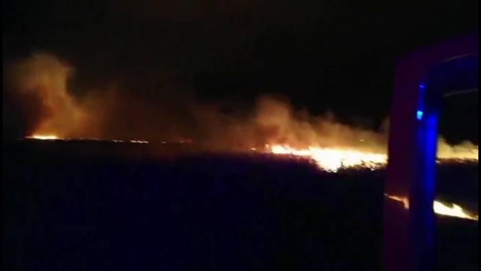 News video: Wieder großer Schilfbrand in Balatonregion!