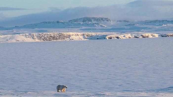 News video: EU sucht eine Strategie für die Arktis
